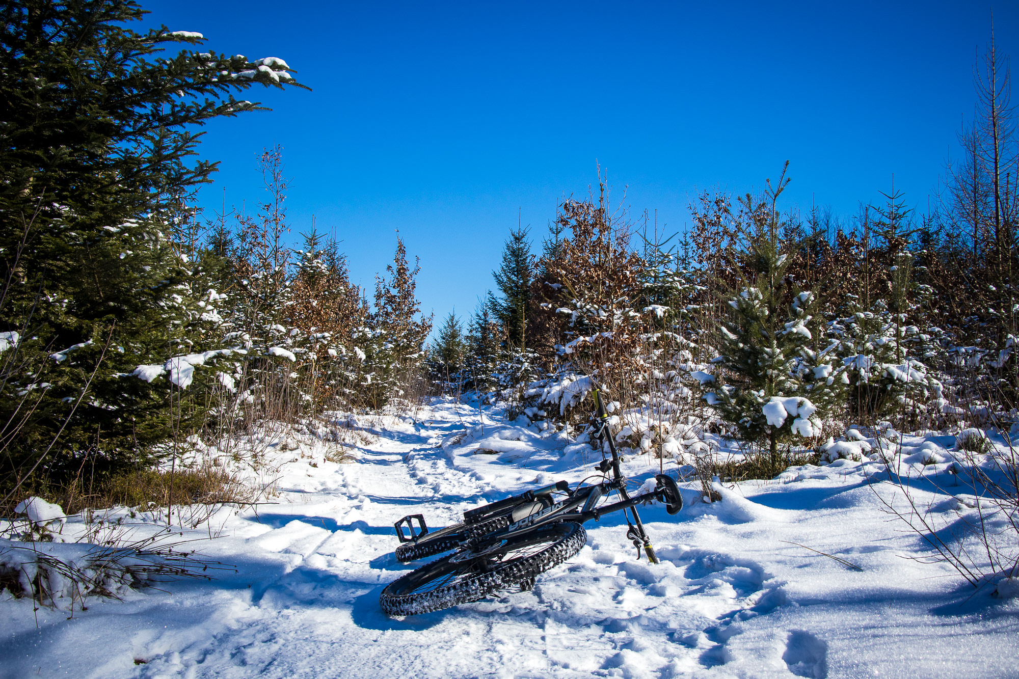 Sonne und Schnee Runde auf den Hometrails